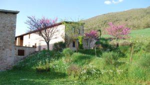 Casale Carocci